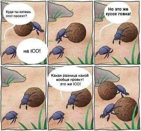 ICO тренды