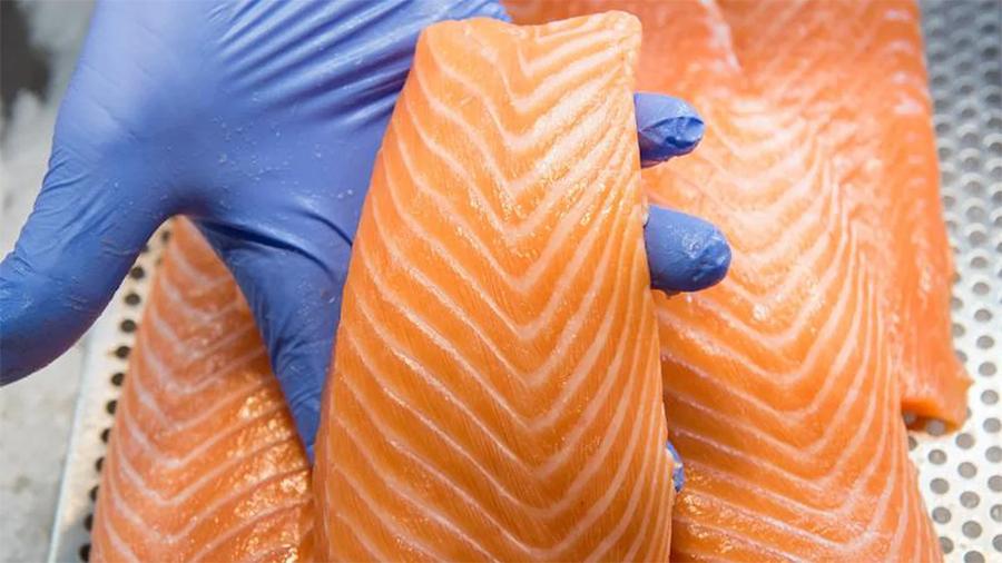 Европейские производители лосося Cermaq и Labeyrie используют блокчейн IBM в цепочках поставок